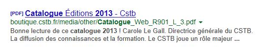 Exemple de description de PDF dans une page de résultats